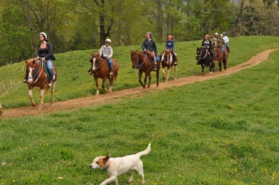 Sandy Bottom Trail Rides offers Horseback Riding for All Ages